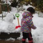 雪、嫌い…